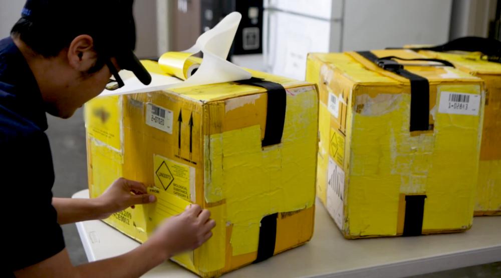 A driver prepares outbound specimen boxes for transport.